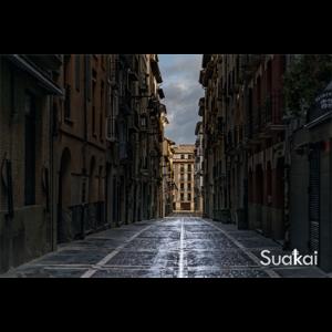 tienda-cuadro-3-suakai
